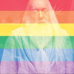 dumbledore gay cover