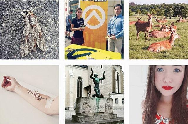 collage nazi2
