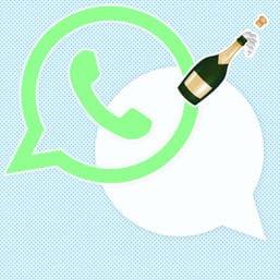 whatsapp sylvester