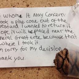 Entschuldigungsbrief mit Zapfen