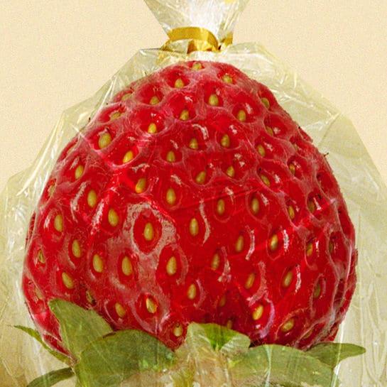 erdbeereninplastikcollage