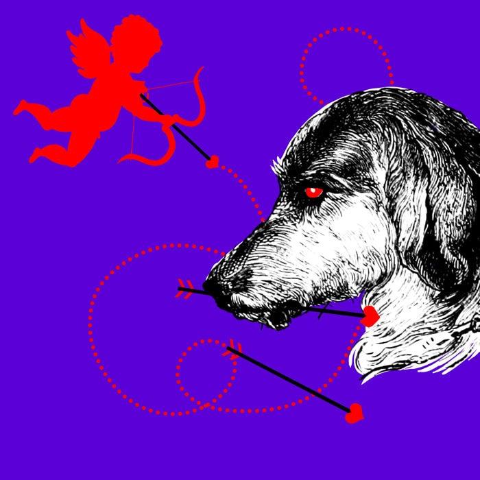 horrordate hundebesitzer cover