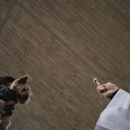 priest afp