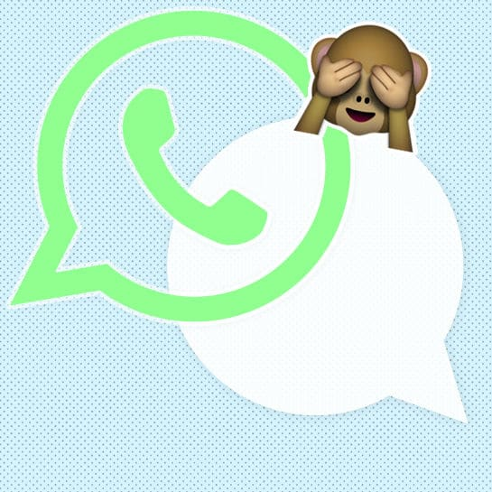 whatsapp wg