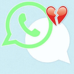 cover whats app kolumne