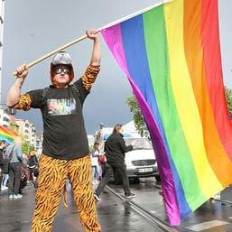 demo für die homo ehe dpa