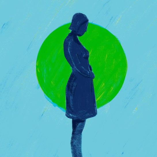 scheinschwanger cover