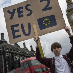 brexit protestdan kitwood