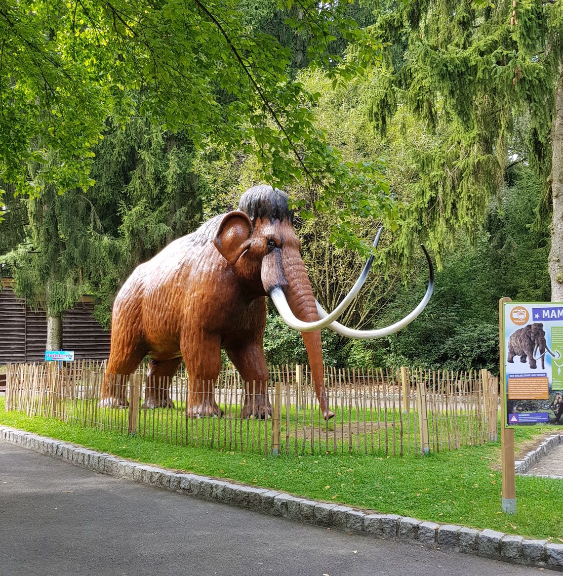 Früher war das Mammut stolz und frei. Was ist es heute?