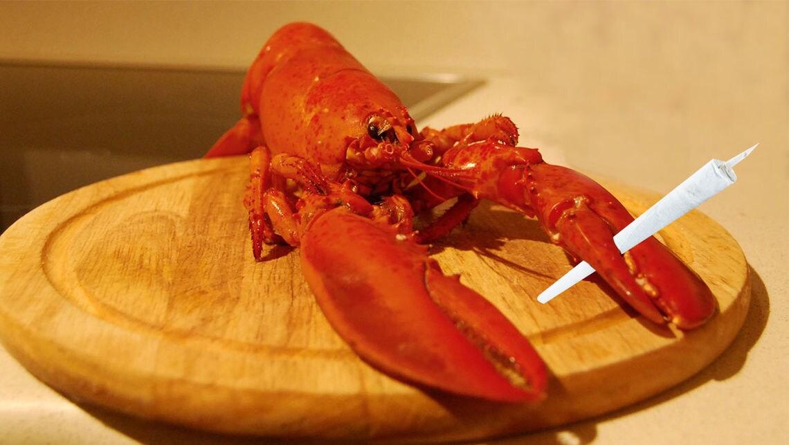lobster sde
