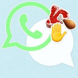 whatsapp kolumne fleischesser cover
