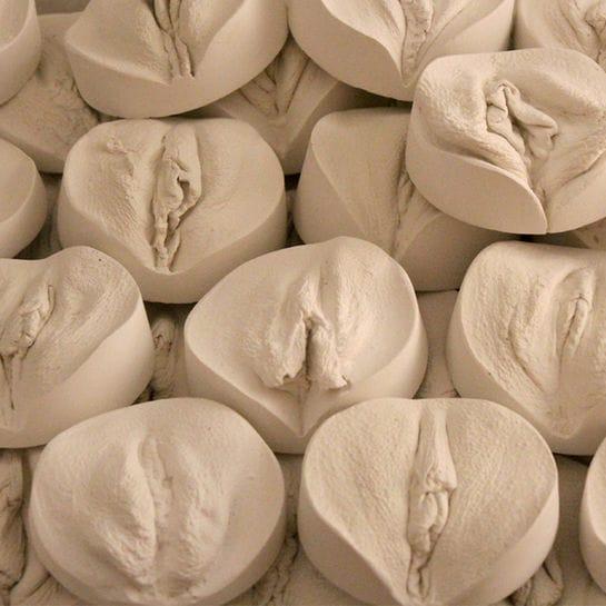 vulva abdruck cover