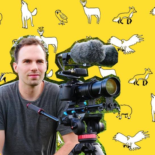 jobkolumne tierfilmer cover