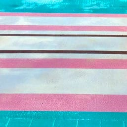 transgender zebrastreifen cover