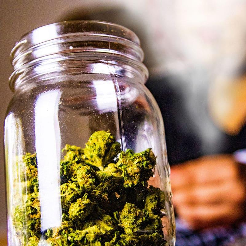 kifferin cannabis cover2