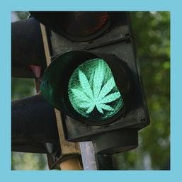 buzz spd weed
