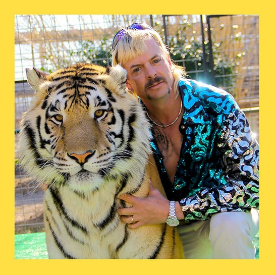 buzz tiger king