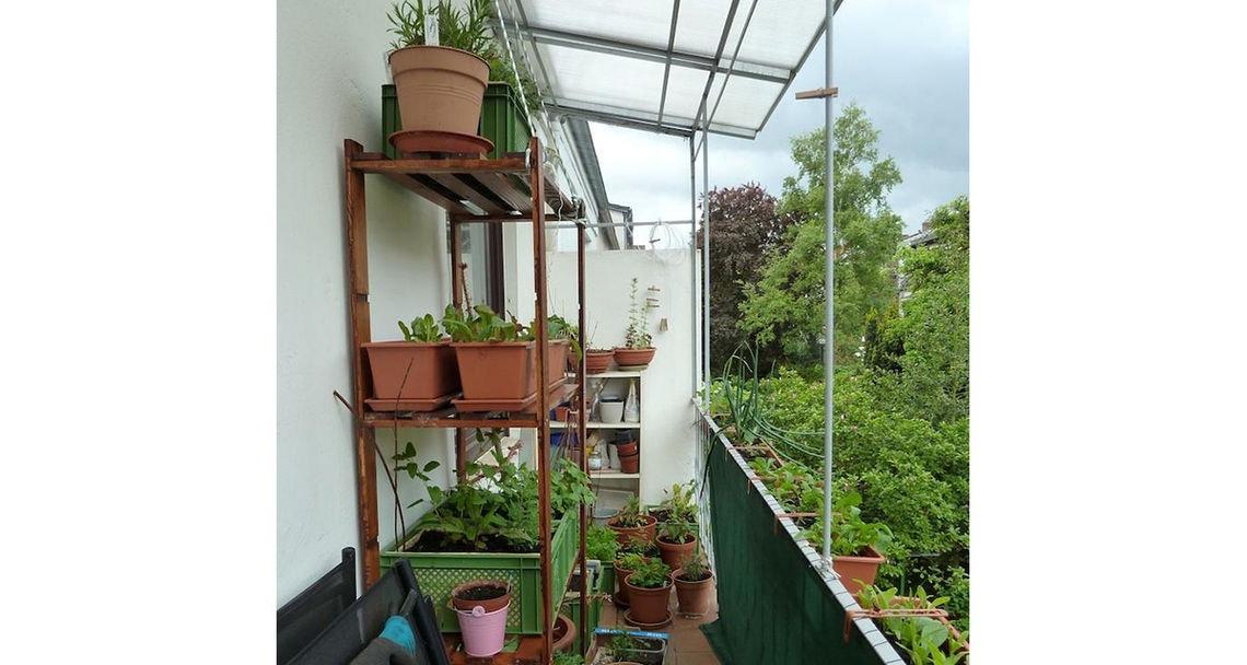 urban garden galerie 2