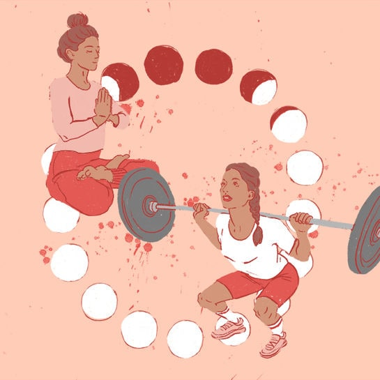 zykluskolumne 7 sport