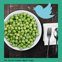 buzz vegetarisches essen twitter cover