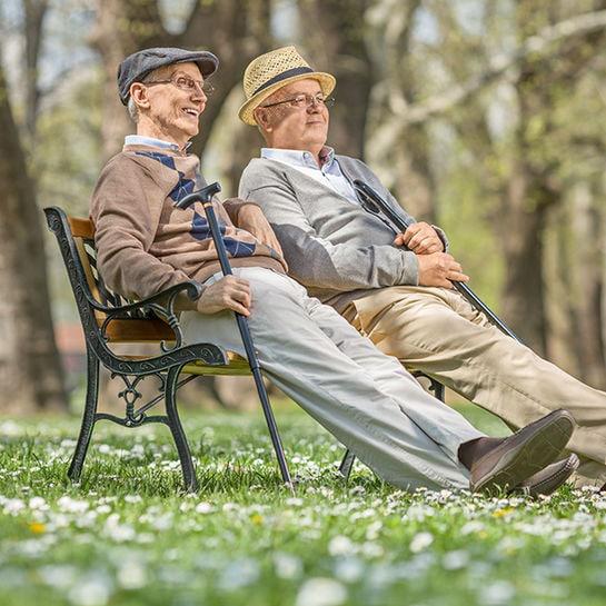 alte freundschaft